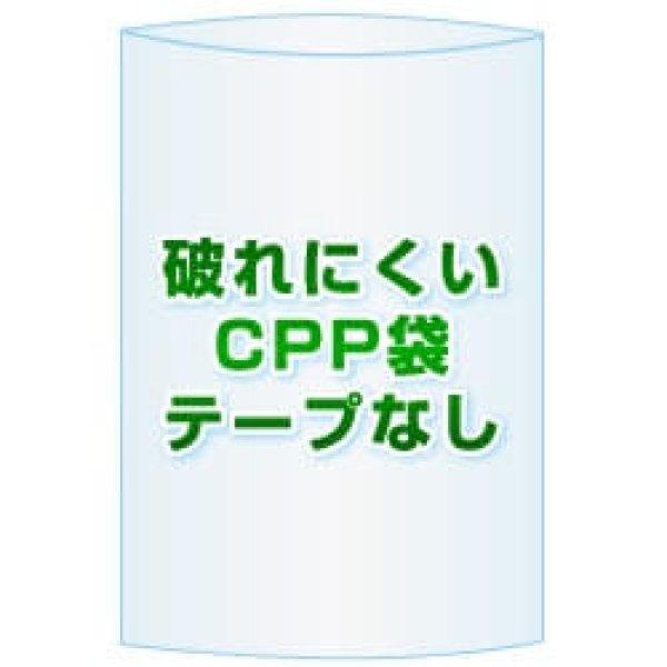 画像1: CPP(シーピーピー)袋(フタなし)【#40 60x255 1,000枚】 (1)